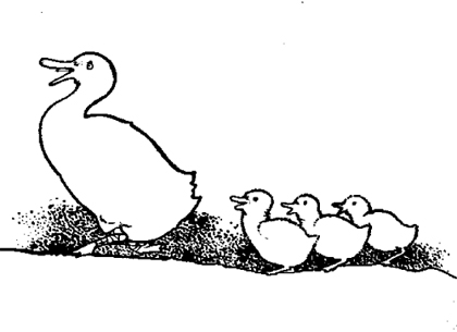 http://www.wbrands.com/uploads/images/illustrations/the_duck_and_her_ducklingsx420.jpg